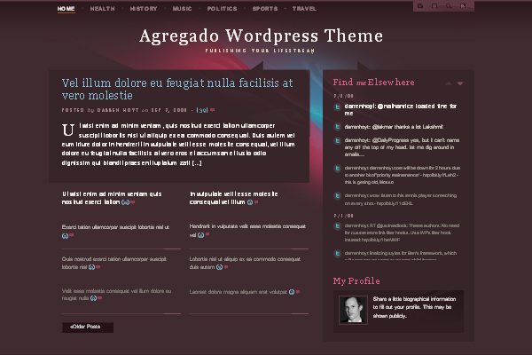 Agregado WordPress Themes