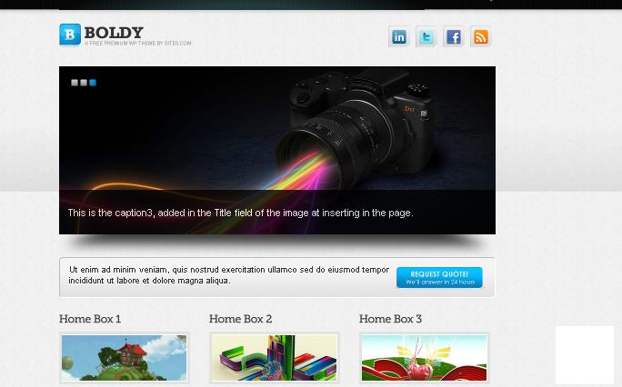 Boldy Free WordPress Theme
