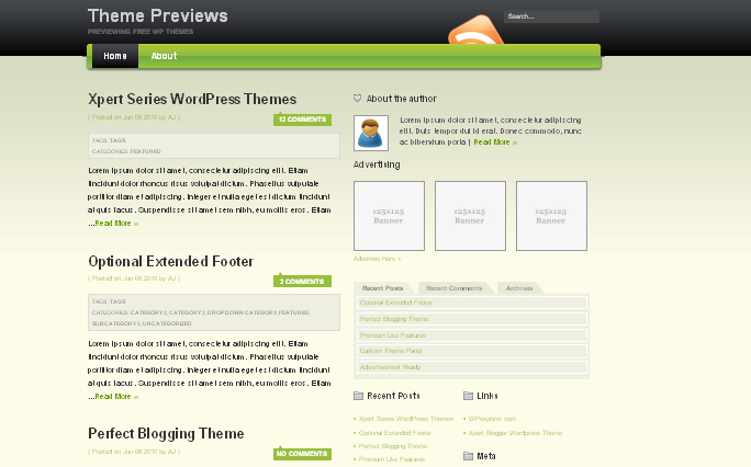 Excellence WordPress Themes